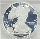 2009 Walking Liberty 1/2LB Proof Coin In Acrylic Case
